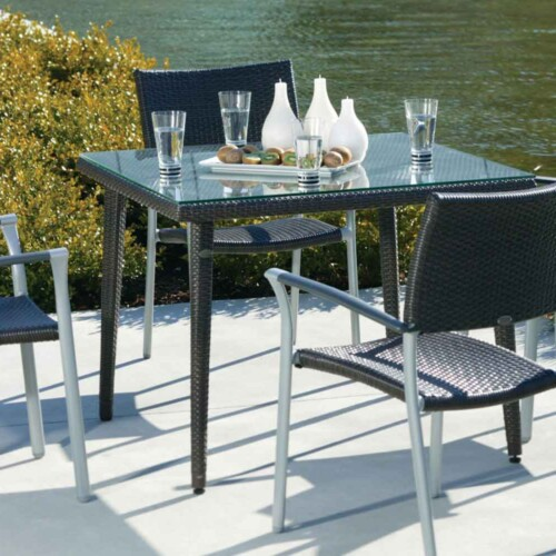 New Roma Dining Chairs